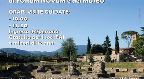 L'area archeologica di Forum Novum